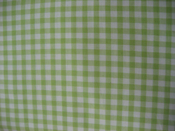 Gingham - Lime Green Large Check