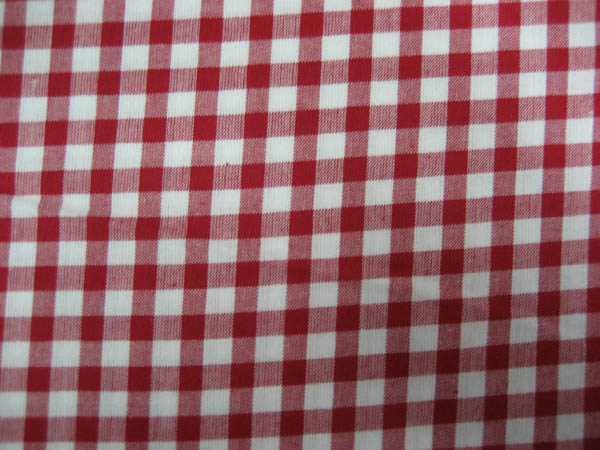 Gingham - Large Red Check